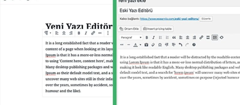 wordpress-yazi-editoru