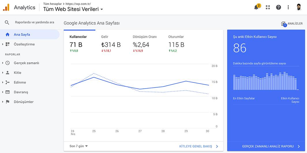 Ziyaretçi İstatistiklerini Google Analytics'te Görüntüleme