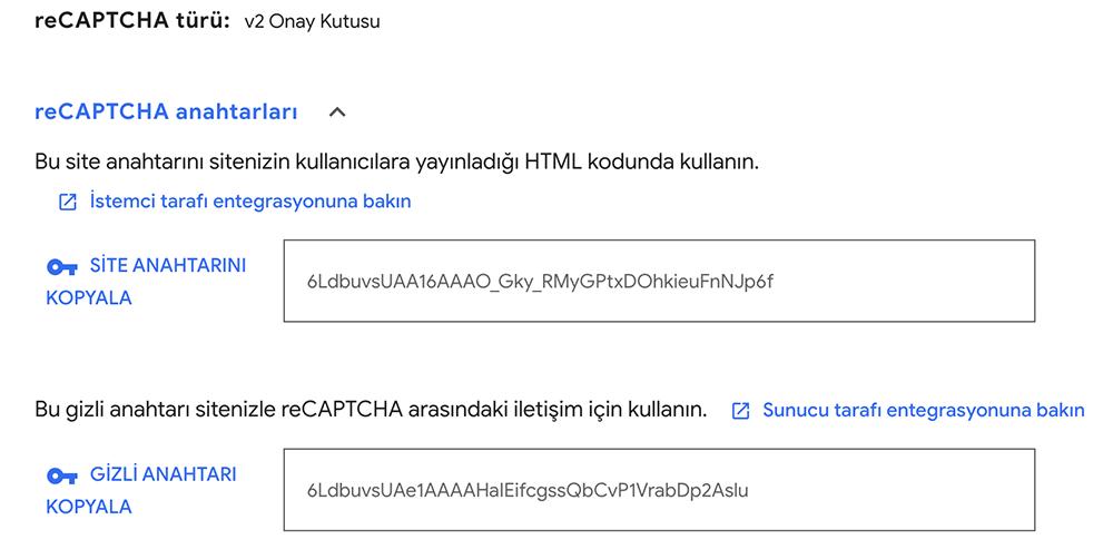Google reCAPTCHA eklenti ayarları