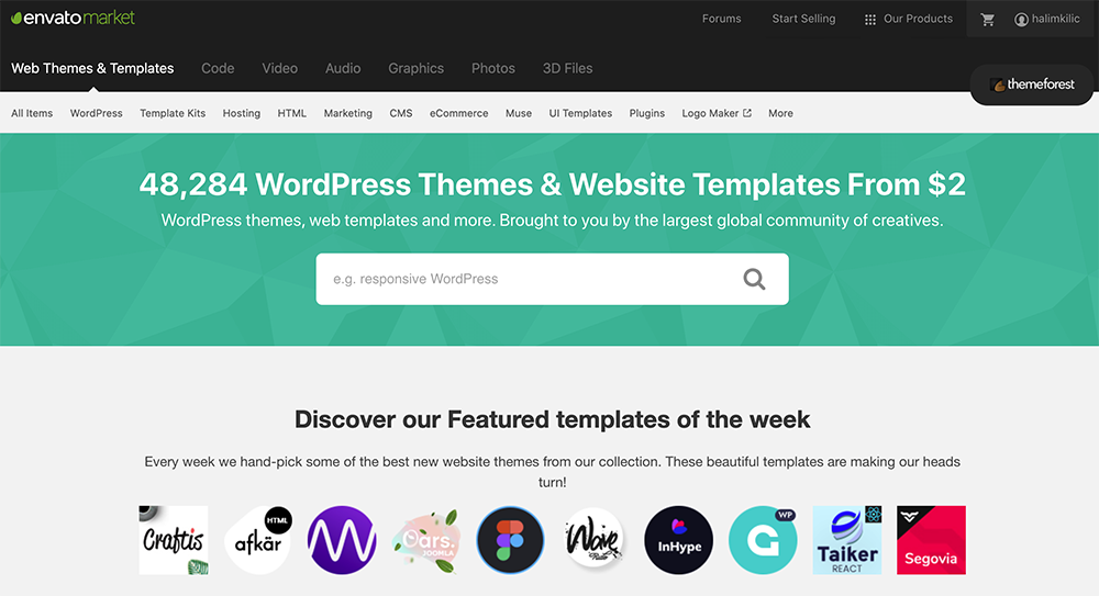 WordPress Blog Tema Seçimi